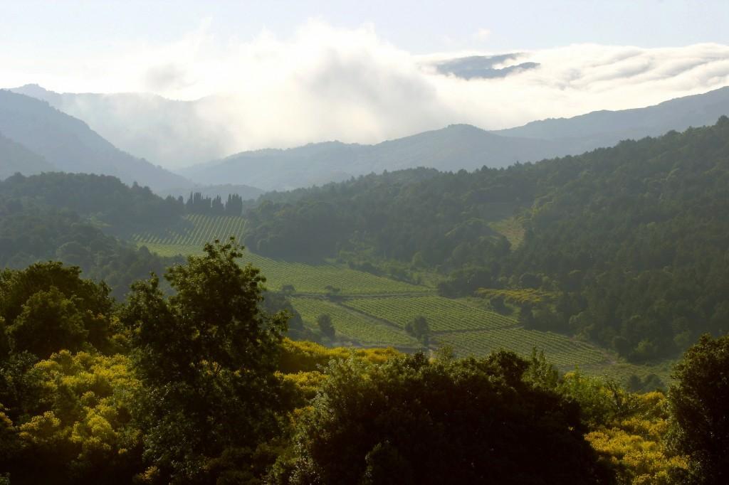 Domaine de Martinolles