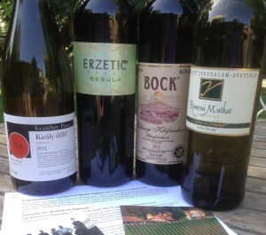 Slovenian and Hungarian wines from Protocol Wine Studio