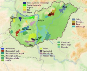 Hungarian Wine Regions
