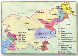 Slovenian Wine Regions