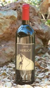 2010 Merlot