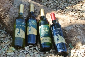 Bushman Rock Estate wines
