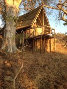 #8 Baobab Safari Lodge
