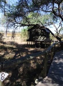 Our tent on the Okavango Delta