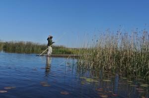 A mokoro on the Okavango Delta
