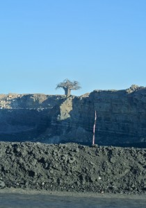 Lone baobab tree stands over an open-pit coal mine near Hwange, Zimbabwe