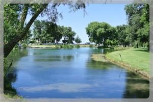 Oak Farm Vineyards pond