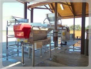 Crush pad equipment at Oak Farm Vineyards