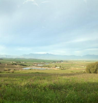 View of the Swartland